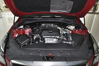 28T 技术型
