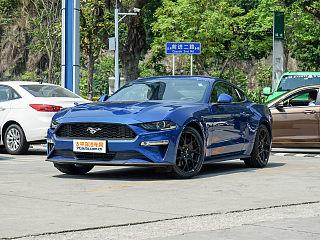 Mustang-野马