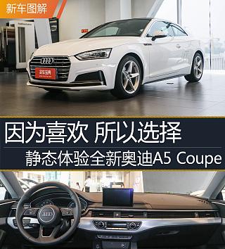 Cabriolet 45 TFSI quattro 運動型 國VI