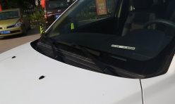 每日关注:5-7万元 力帆七座SUV迈威预售价格公布
