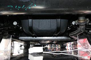 Model 3(进口)其他