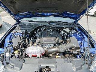 Mustang其他