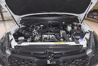2.5T柴油四驱豪华版标准轴距