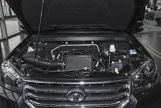 2.4L汽油两驱进取型大双排国VI 4K22D4M